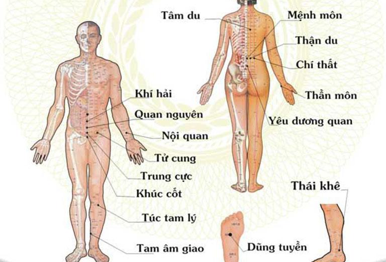 Vị trí các huyệt vị trên cơ thể